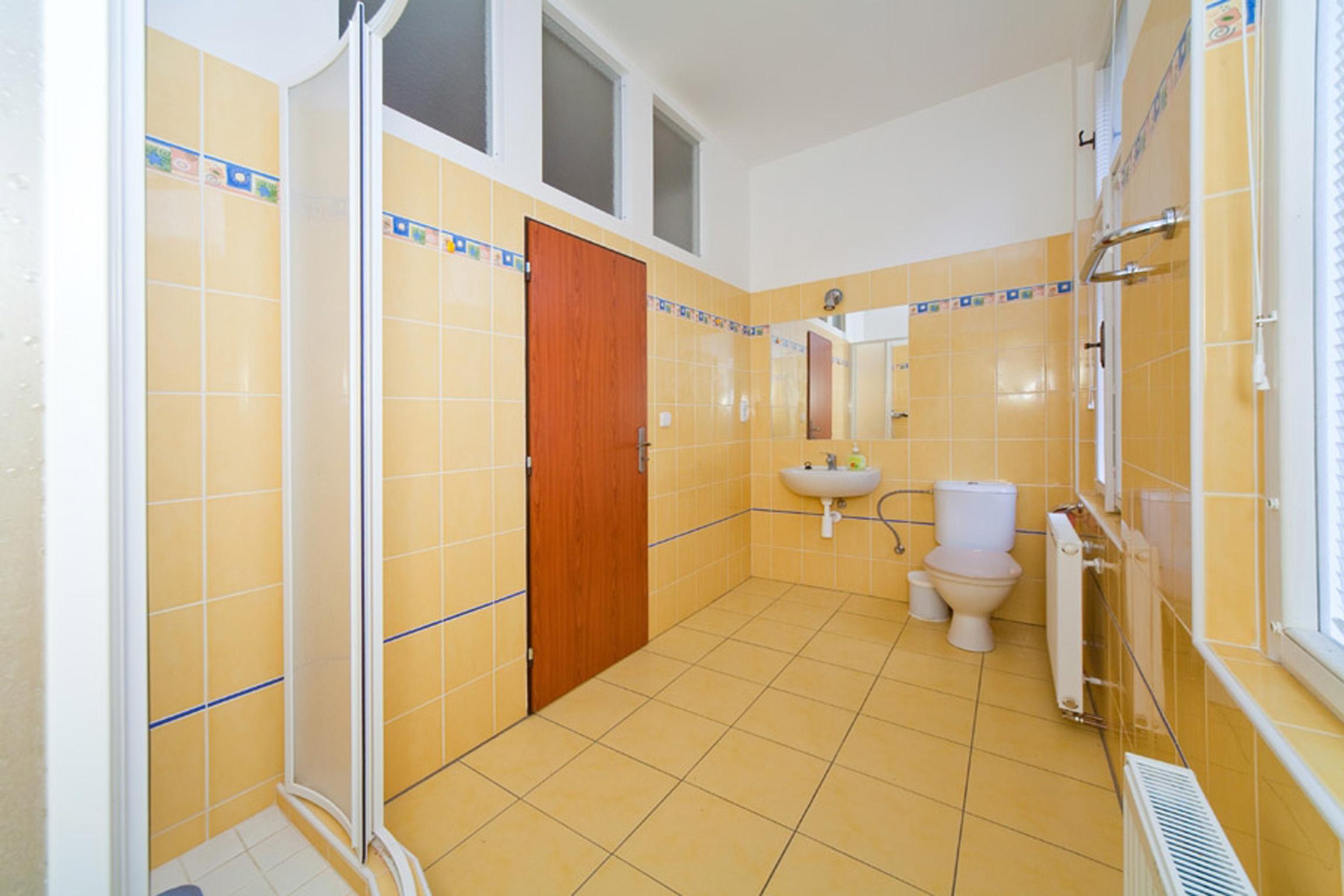 Spacious Apartment in the City center of Prague photo 21013062