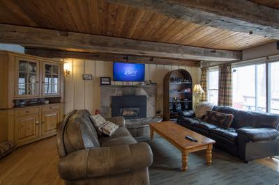 Apartment 6 Bed Blue Mountain Cottage with Hot Tub  102 - Sleeps 14 photo 20444196