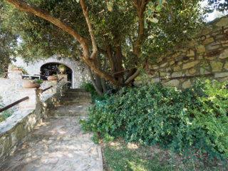 Apartment poggio alla rocca - corbezzolo photo 20326853