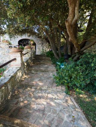Apartment poggio alla rocca - corbezzolo photo 20326855