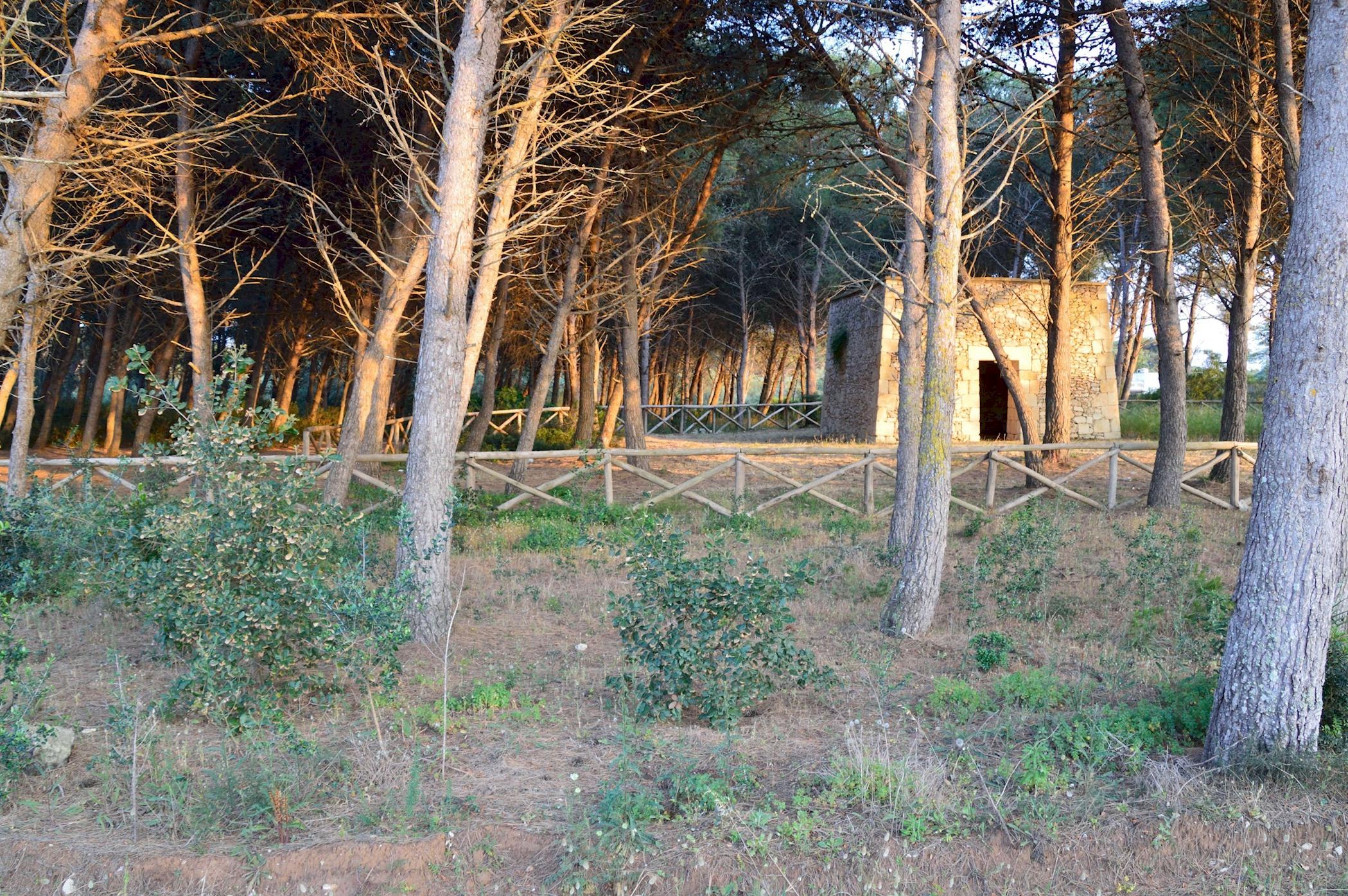 Elcisia luxe beach house photo 20076187