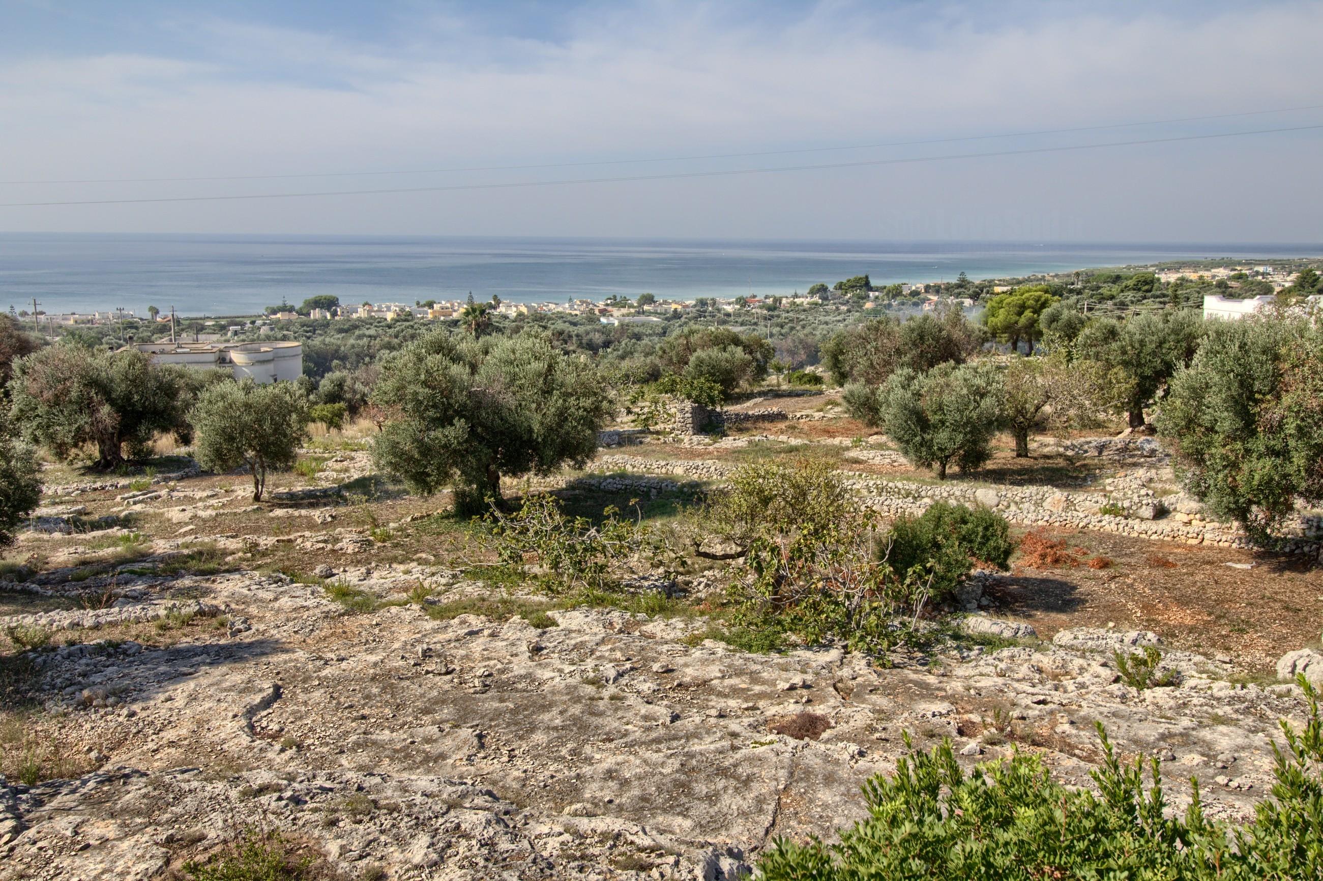 Grazia lovely seaview Pescoluse photo 20077595