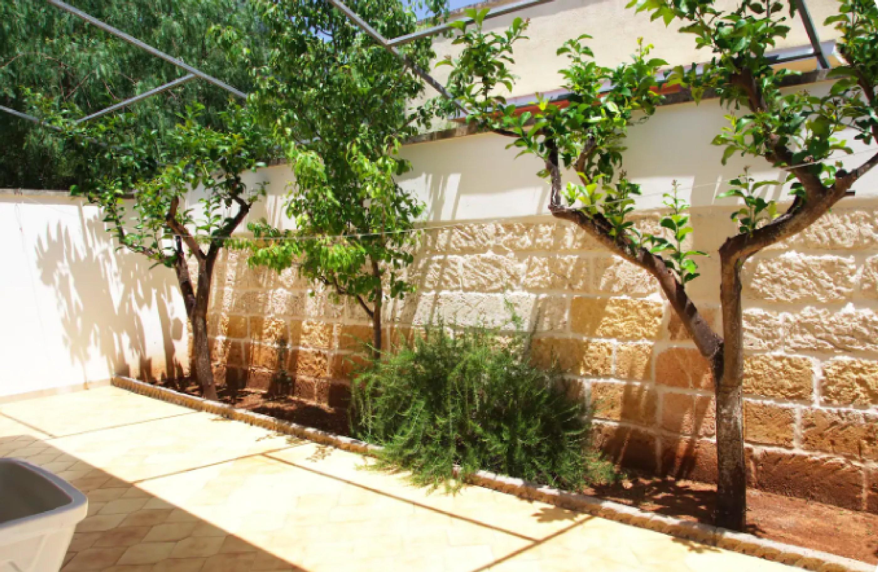 Sabbia Azzurra 2 photo 22947818