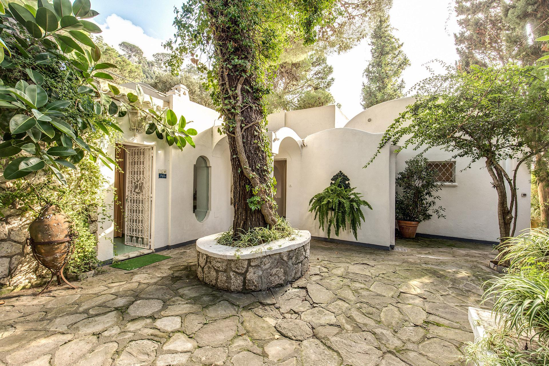 Apartment Green Coral -  Luxury 1950 s Villa photo 18375154