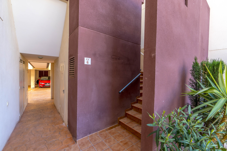 Apartment Espanhouse Alameda photo 20985006