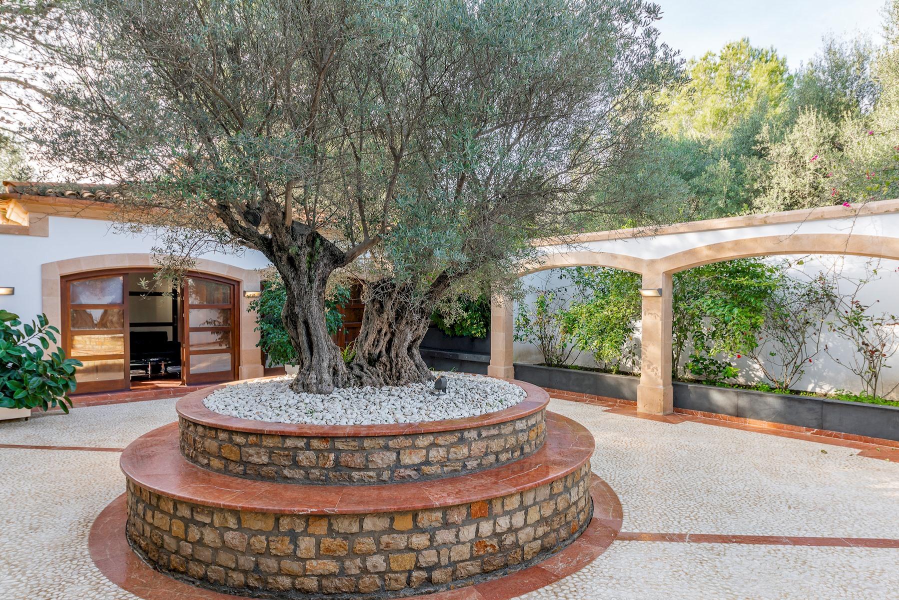 Apartment Villa Son Menusset  piscina privada  wifi  sabor a naturaleza photo 18378489