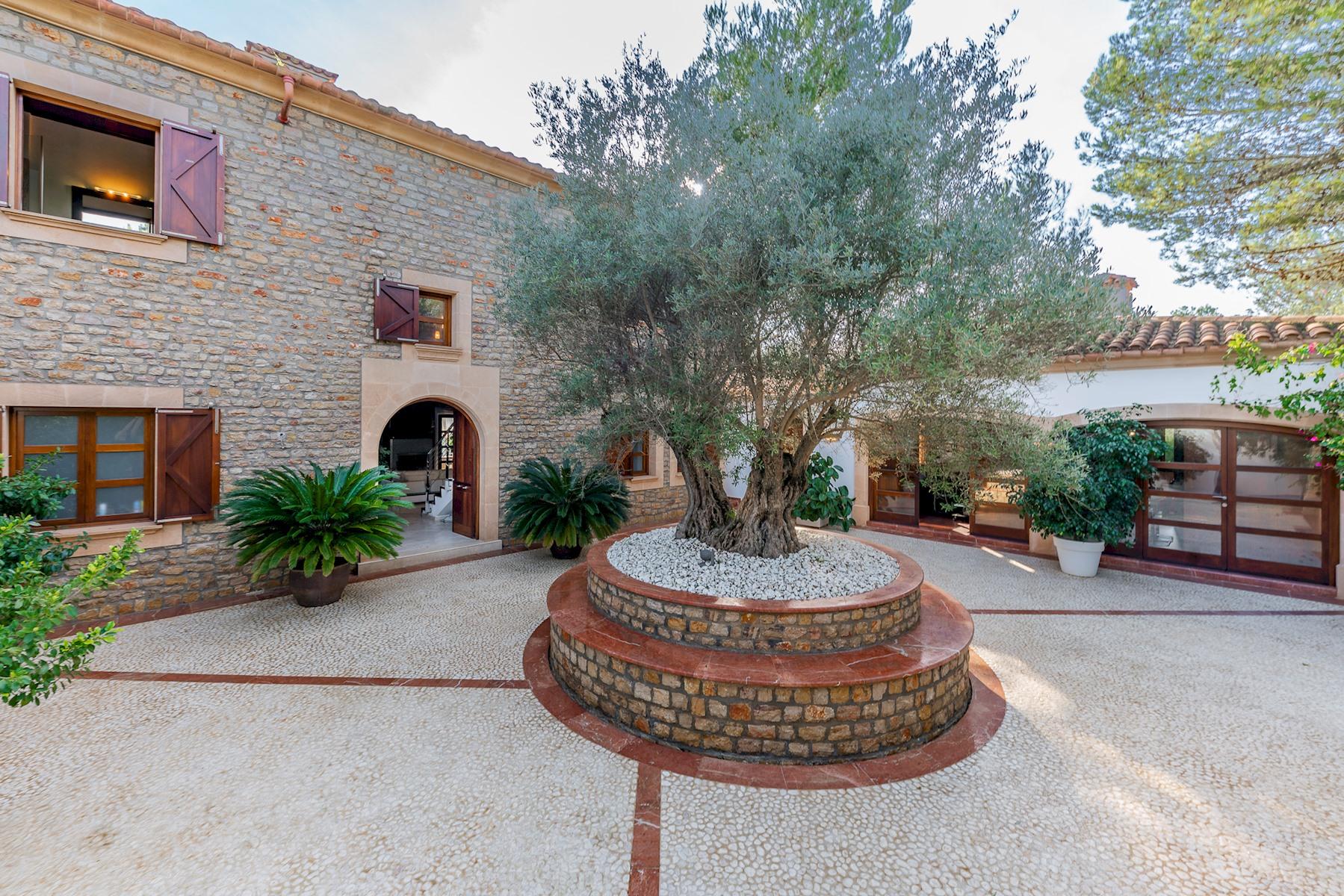 Apartment Villa Son Menusset  piscina privada  wifi  sabor a naturaleza photo 20440735