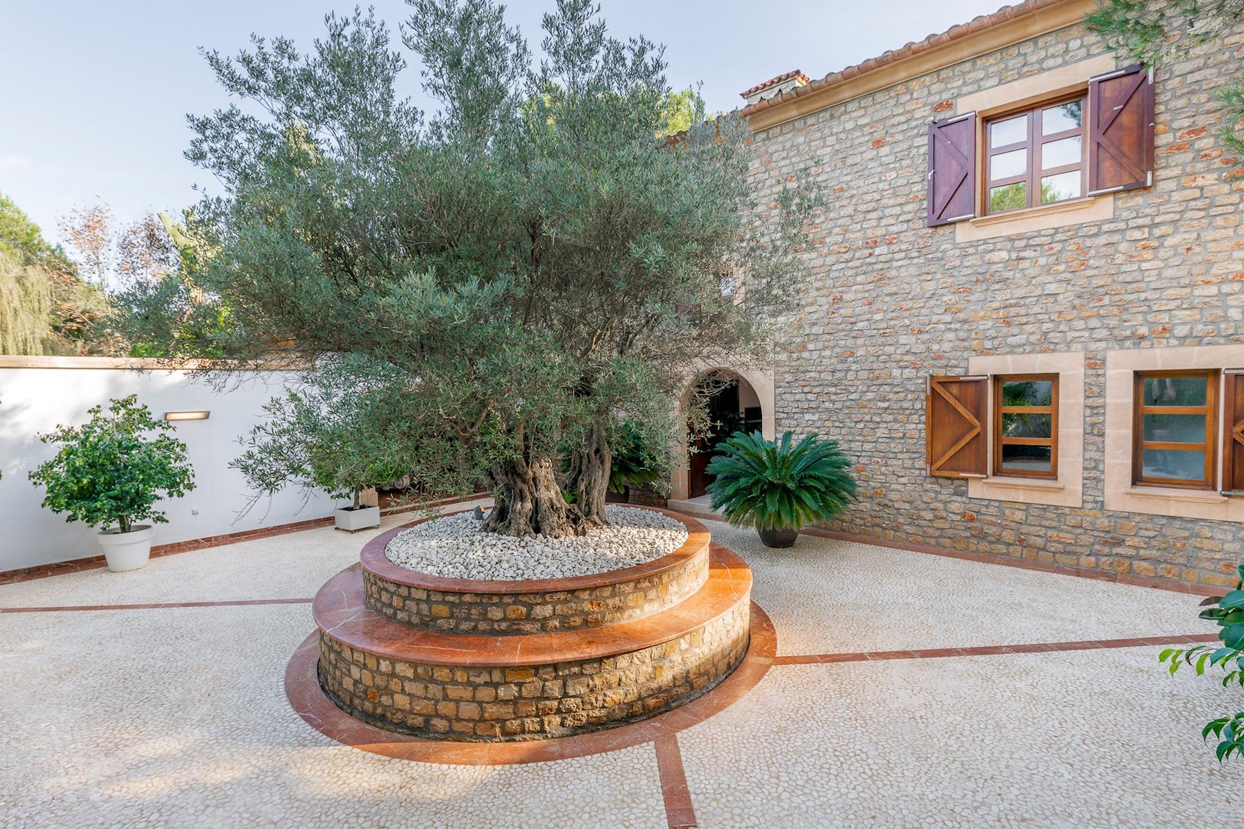 Apartment Villa Son Menusset  piscina privada  wifi  sabor a naturaleza photo 18378491