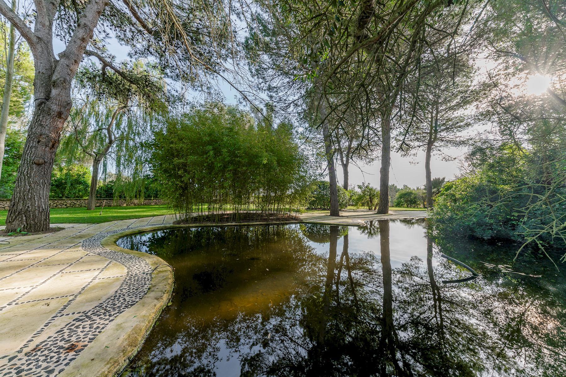 Apartment Villa Son Menusset  piscina privada  wifi  sabor a naturaleza photo 18285120