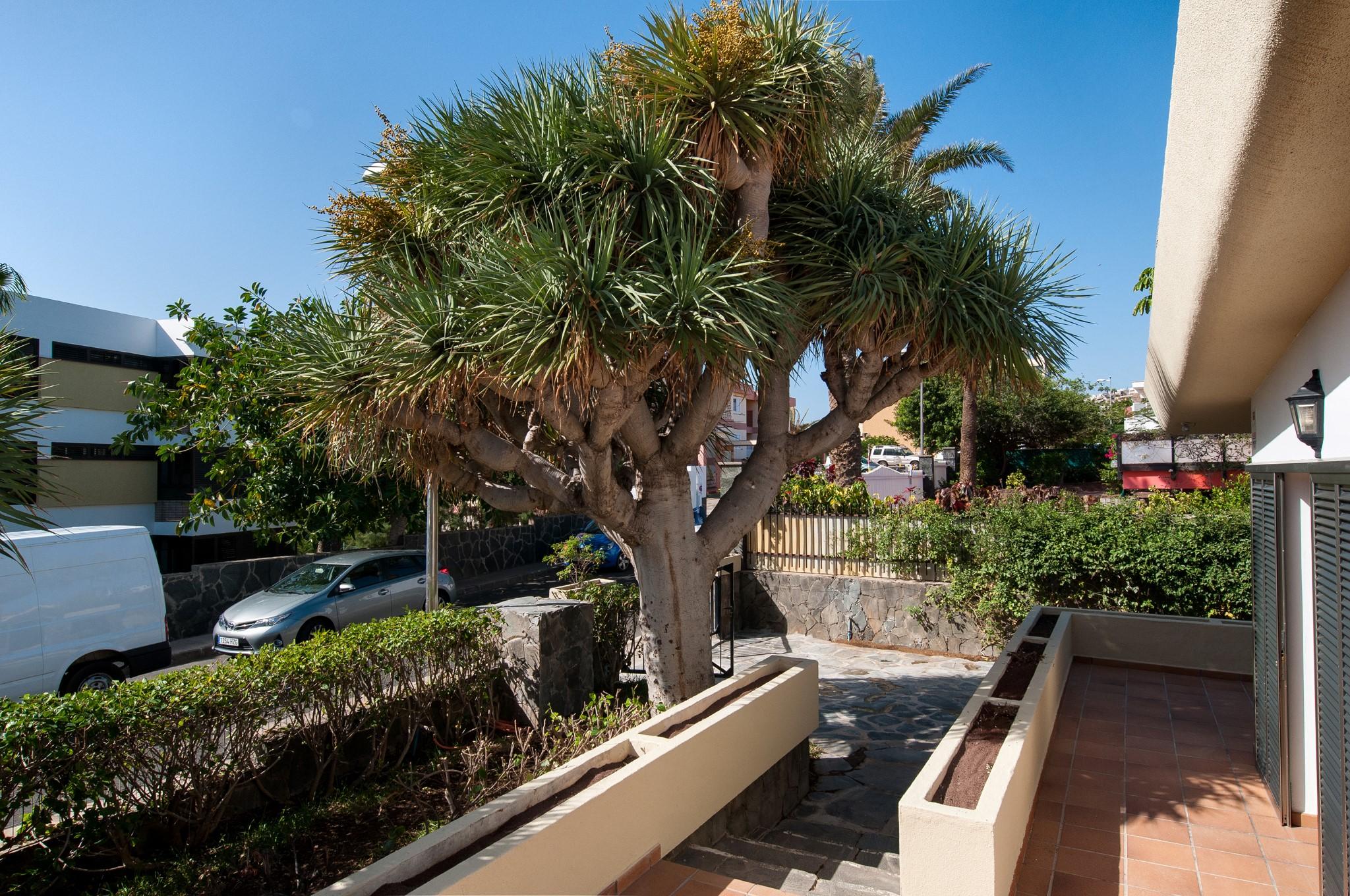 Holiday apartment Beach House San Agustín MCI (2027840), Maspalomas, Gran Canaria, Canary Islands, Spain, picture 11