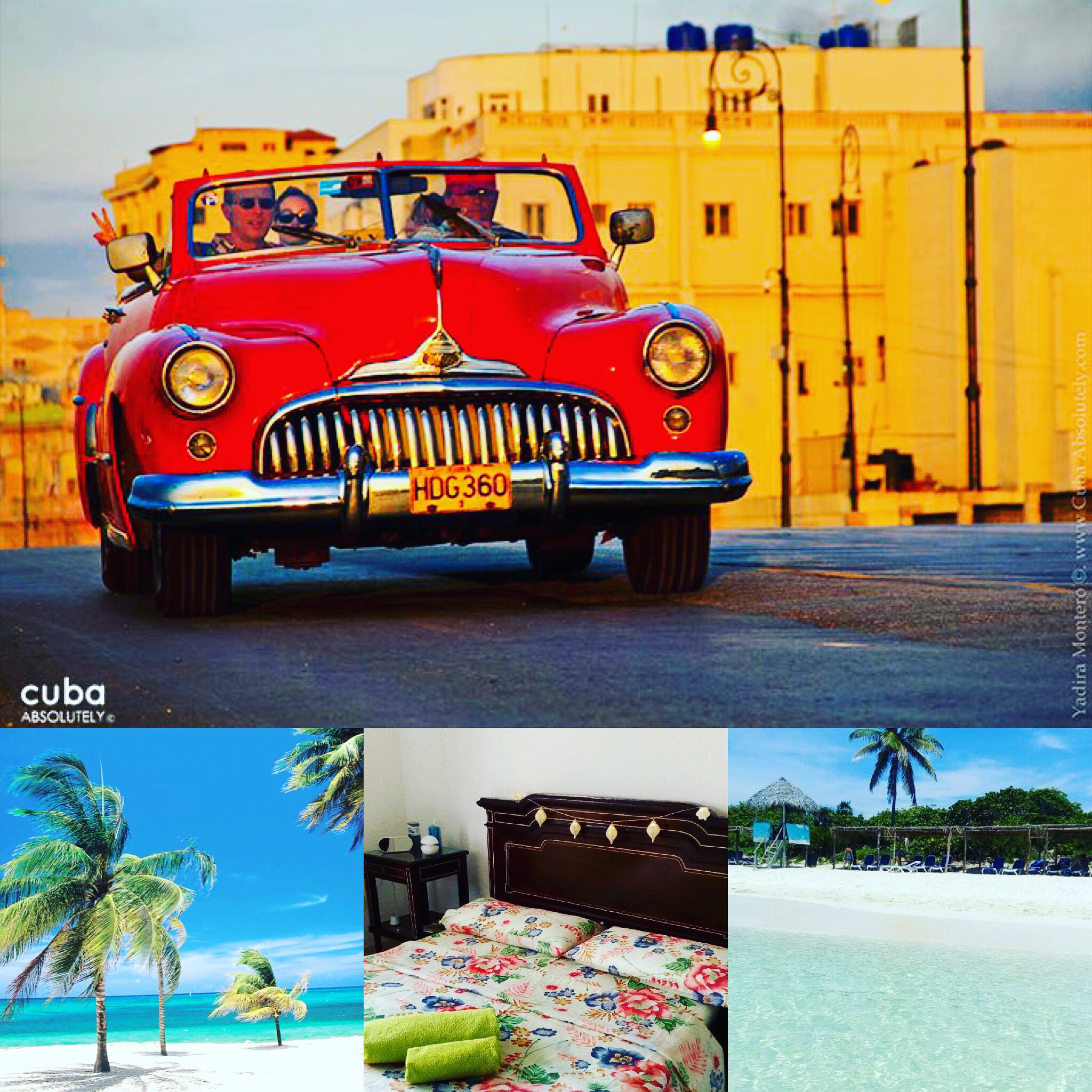 "B&B BOUTIQUE VILLA CASA DOLCE CASA -CDC- LA HABANA, CUBA. ""Habitacion La Adelfa"" photo 5875375"