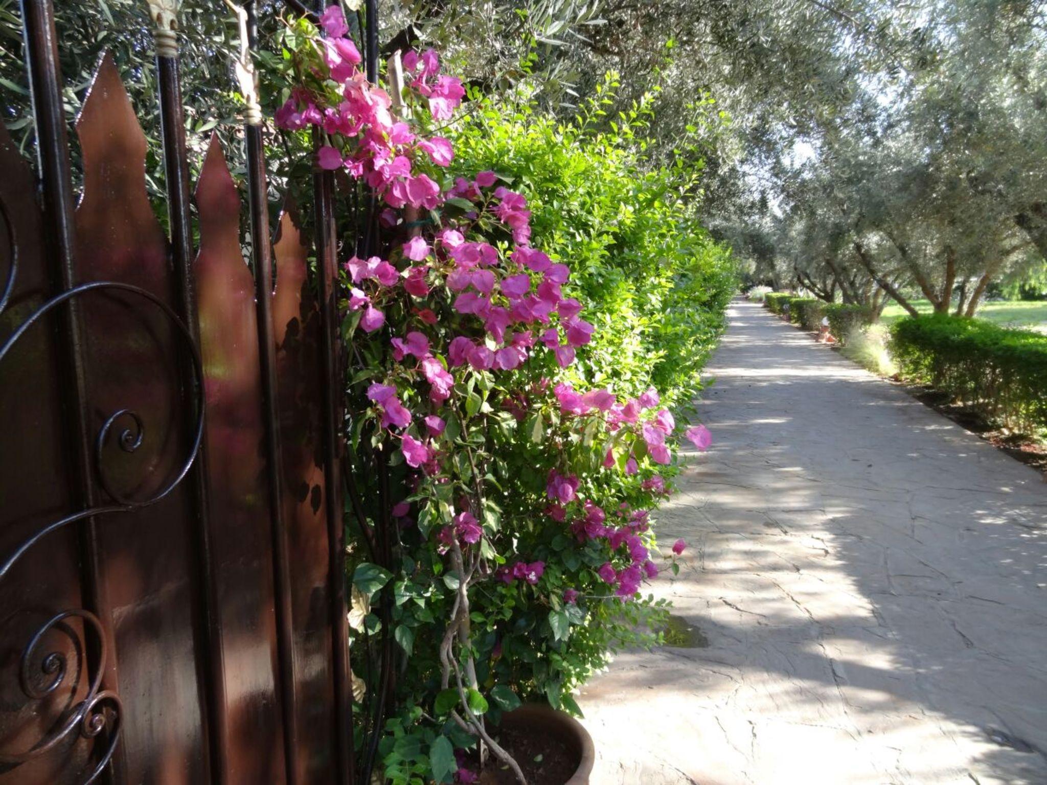 Apartment VILLA ALAAMA - POUR LES AMOUREUX DU GOLF photo 20454357