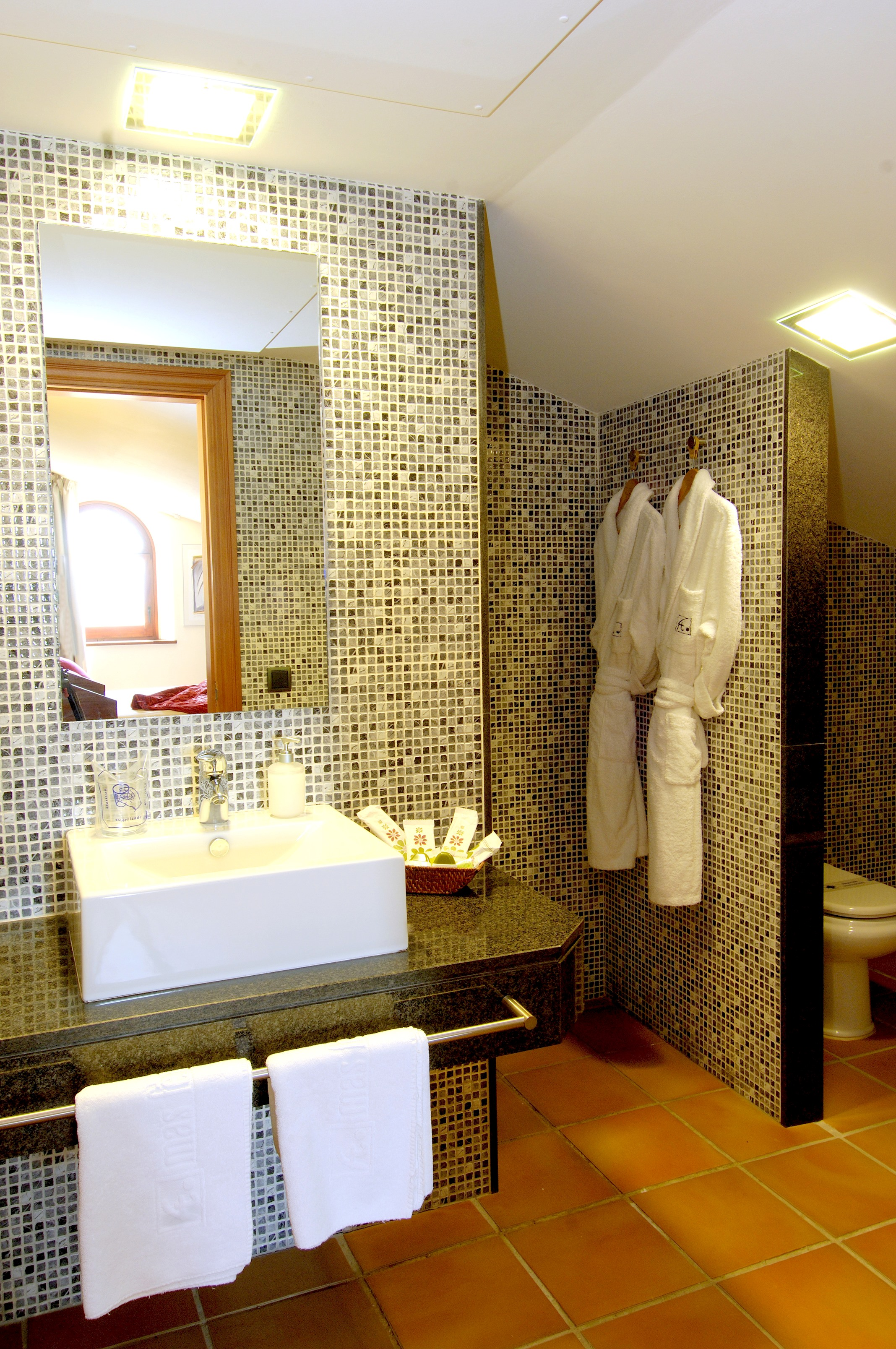 Apartment MAS FERRAN  PRECIOSA VILLA DE LUJO CON PISTA DE TENIS  PISCINA  GIMNASIO Y WIFI GRATUITO photo 26310916