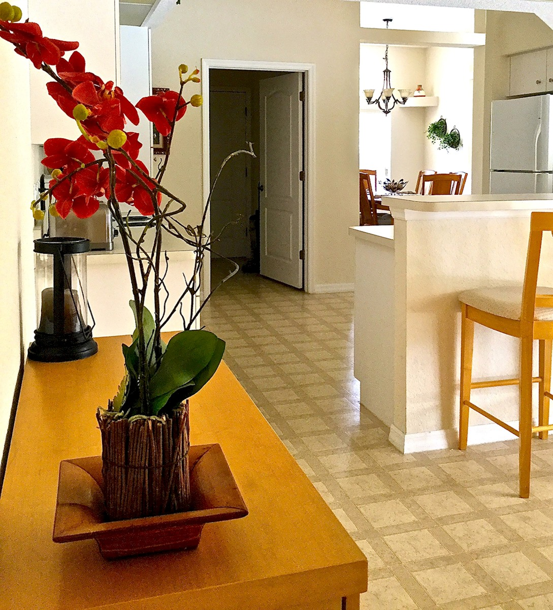 Apartment The Perfect Home in South Gulf Cove  Fabulous villa with spa  pool and 2 master suites  WOW  photo 22766082