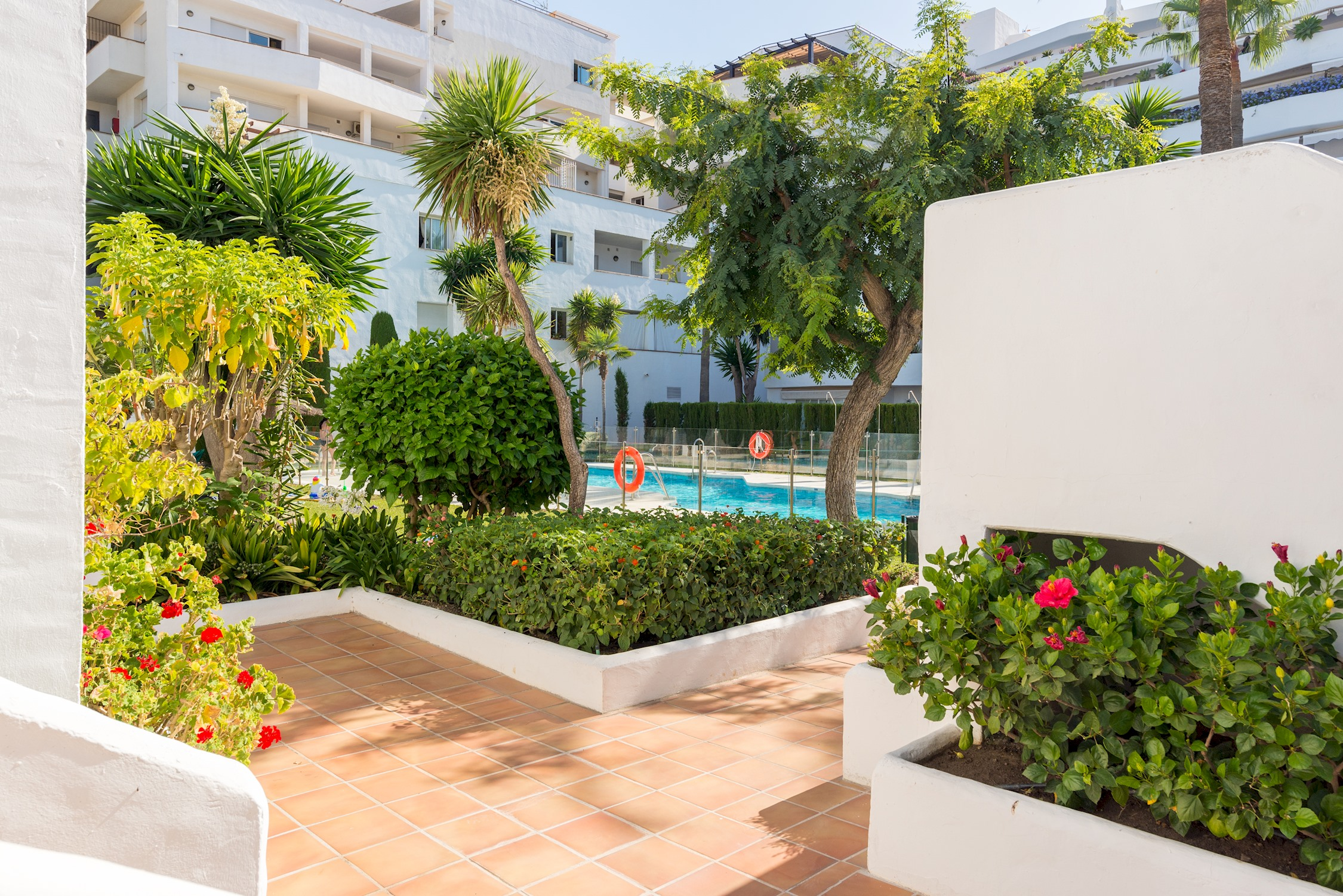 Apartment MalagaSuite Marbella Solarium   Pool photo 21307069