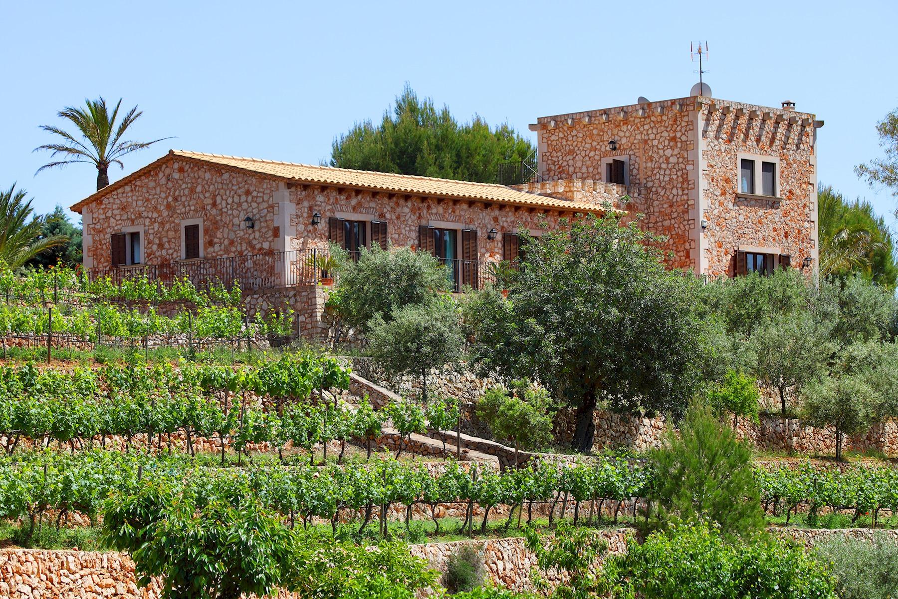 Es Castell photo 20445253