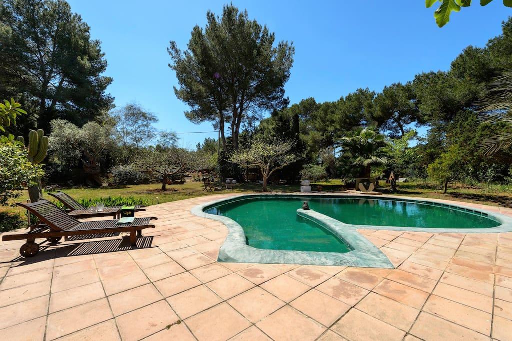 Villa Studio House photo 18814296