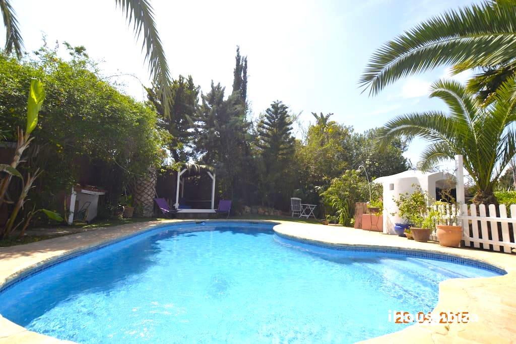 Apartment Villa Eden  piscina privada  chilout   photo 18547377