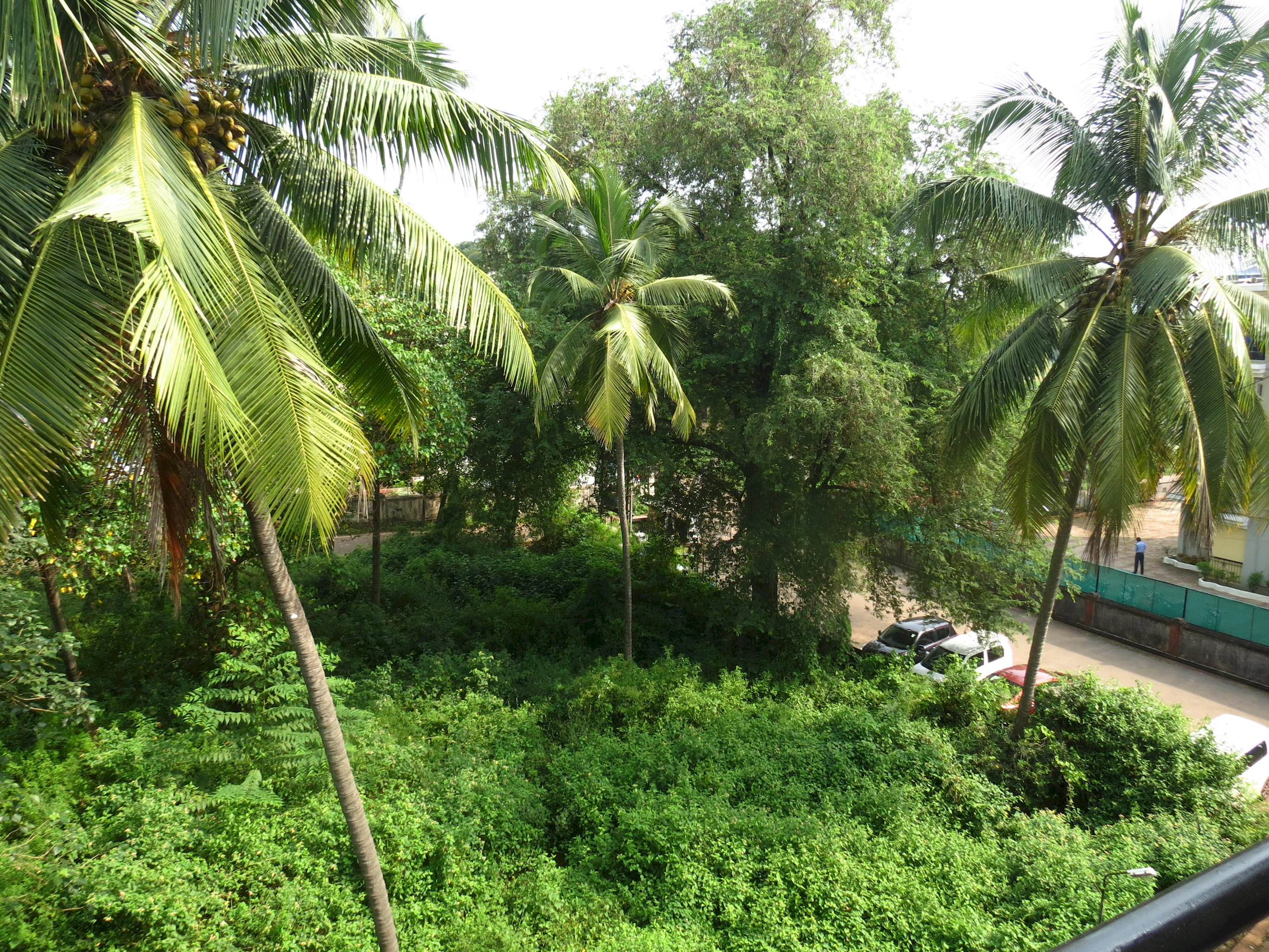 Apartment 37  Central Calangute Serviced Apartment   WiFi photo 20413581