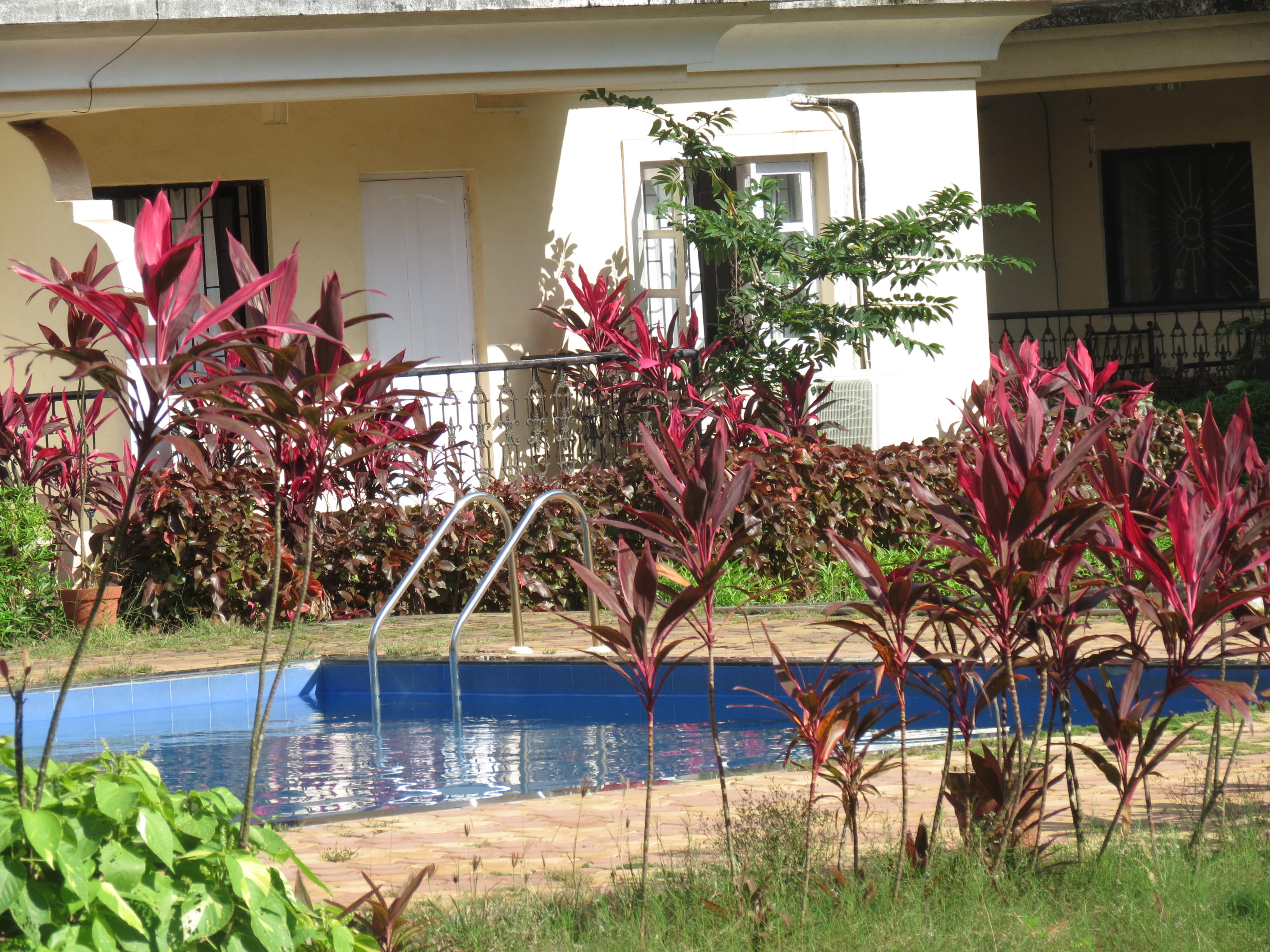 Apartment 38  Central Calangute Serviced Apartment   WiFi photo 19313837